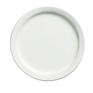 Dinner plate palm 9.5 po